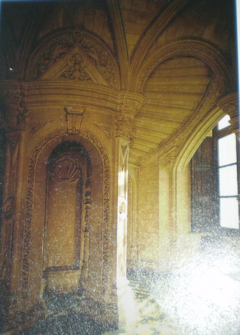 Chateaux de la Loire - Page 2 P9010011