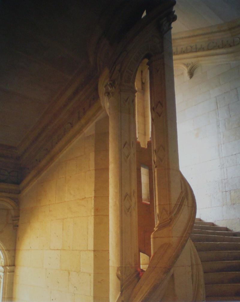 Chateaux de la Loire - Page 2 P9010022