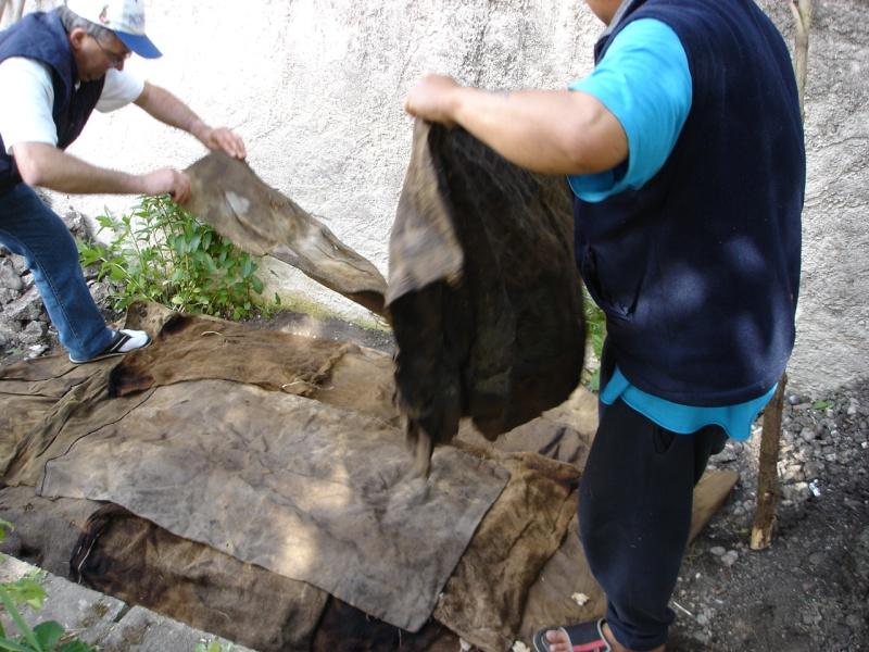 Caldo de piedra: Cuisine préhispanique Dsc00914