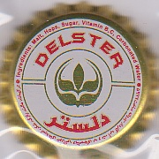 iran Delste11
