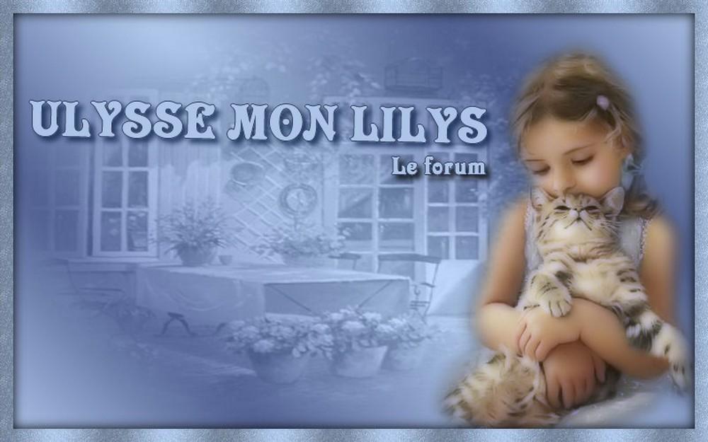 Ulysse mon Lilys, le forum