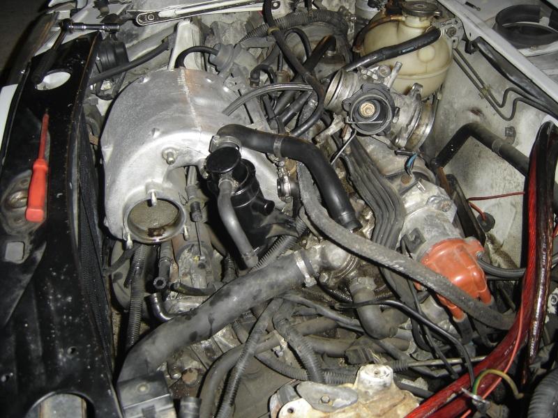 Peugeot 205 GTI 1900 130 CV de 1988 Dsc00425