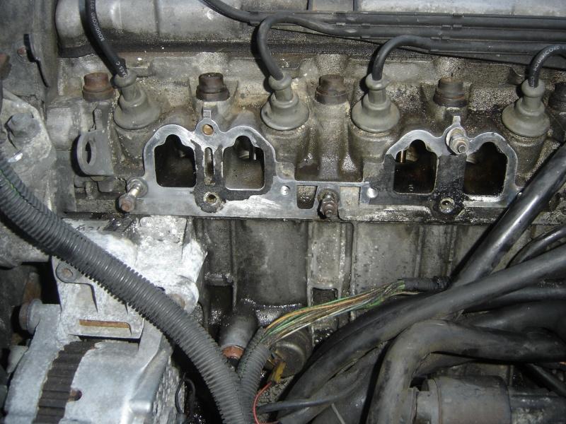 Peugeot 205 GTI 1900 130 CV de 1988 Dsc00429