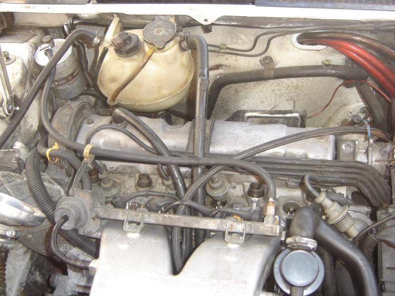 Peugeot 205 GTI 1900 130 CV de 1988 Dsc00440