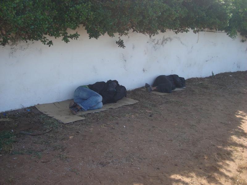 Les sans abris d'Essaouira Dsc00910