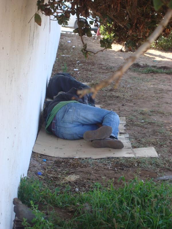 Les sans abris d'Essaouira Dsc00911