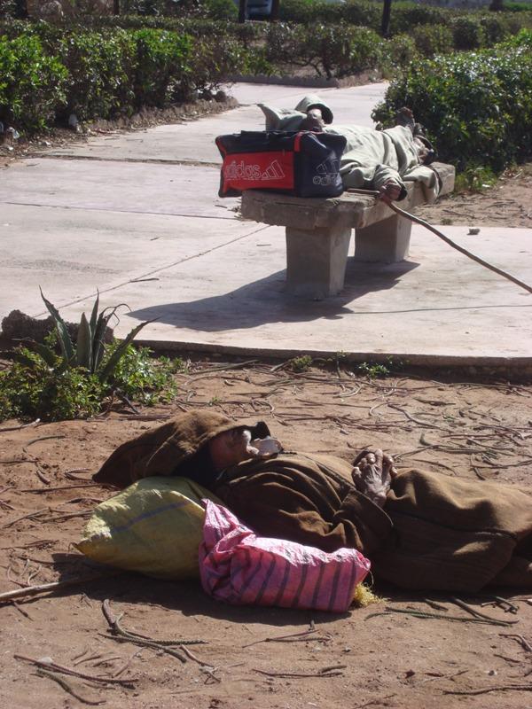Les sans abris d'Essaouira Dsc00912
