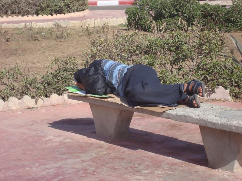 Les sans abris d'Essaouira Dsc00913
