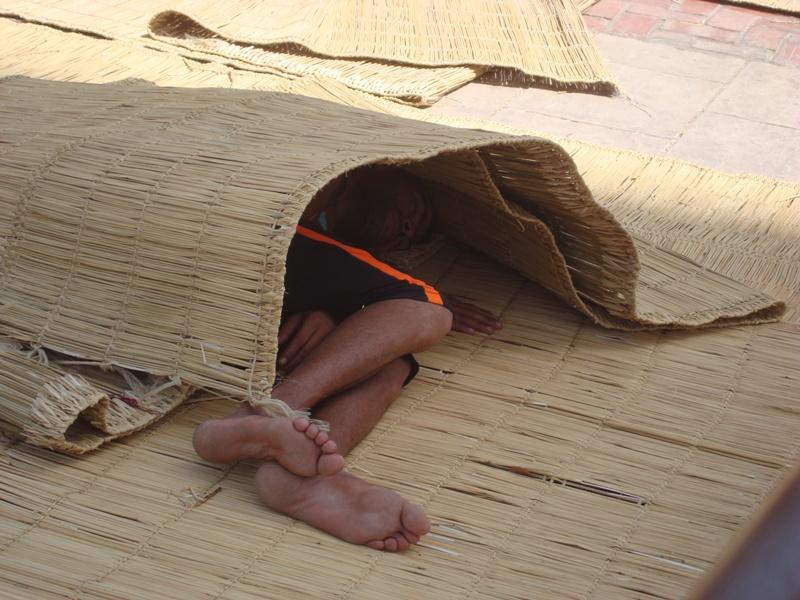 Les sans abris d'Essaouira Dsc00914