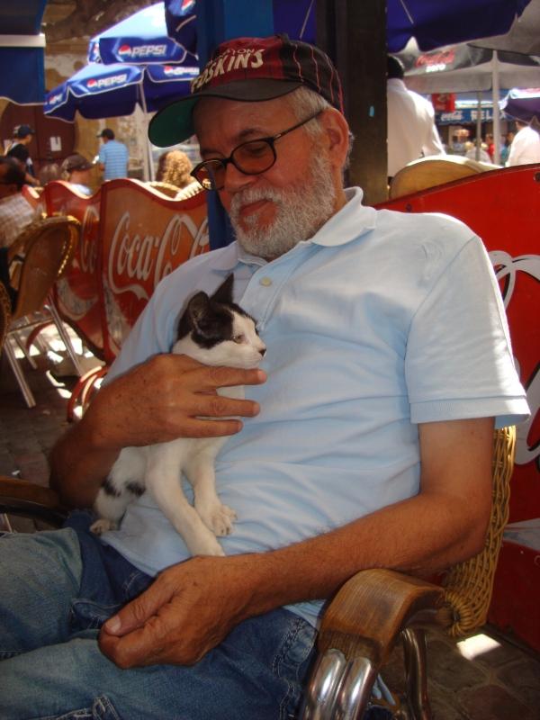 Les Chats d'Essouira Dsc06413