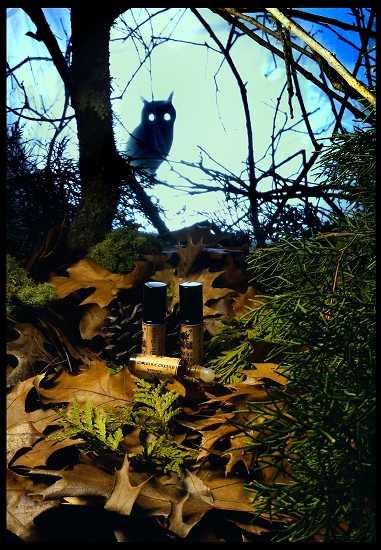 NIGHT WATCHER (The Woodland Collection, General Catalog) Nightw11