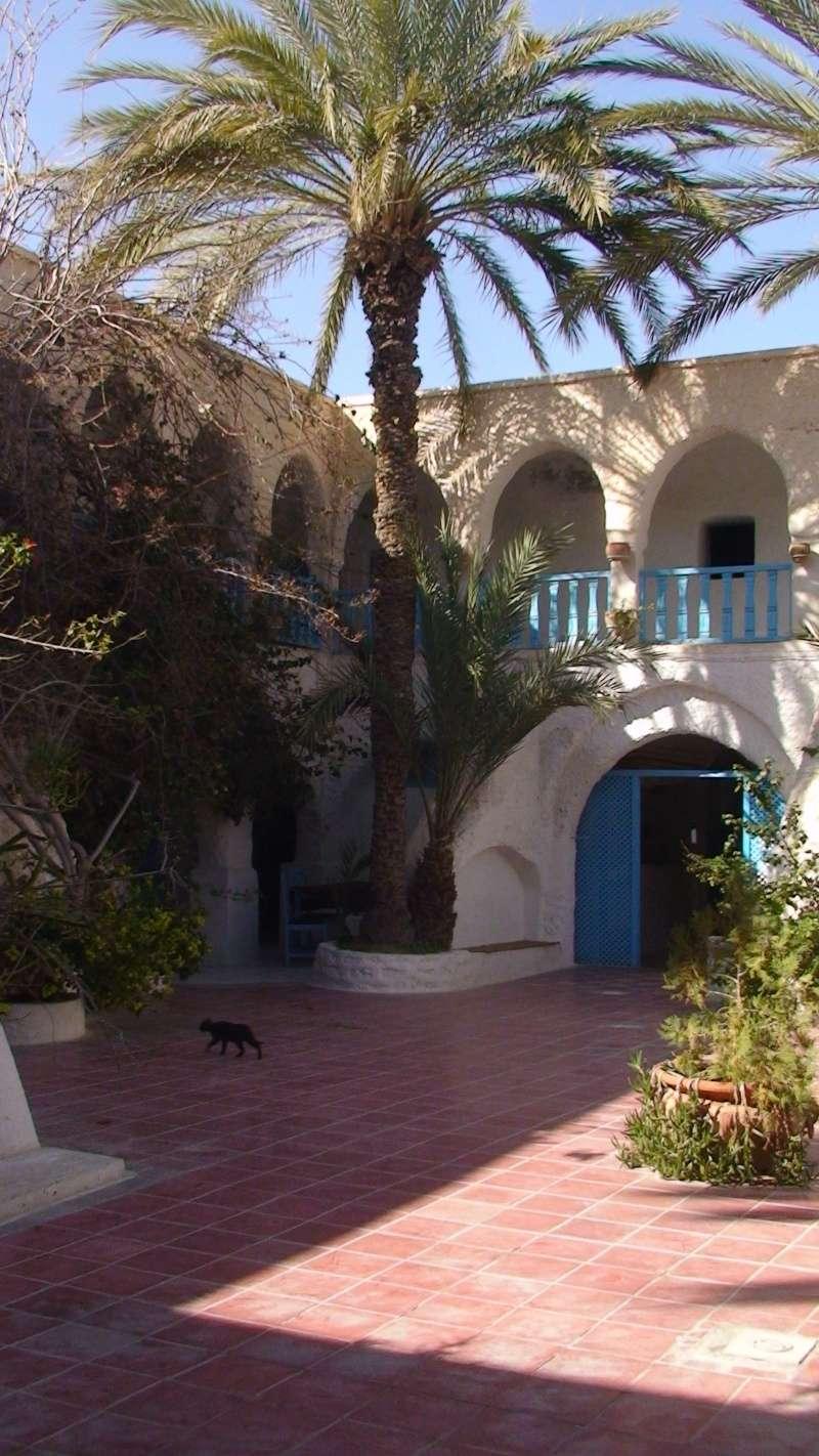 Rèves - Tunisie en Acadyane By PP 2015 - Page 3 Dsc01834