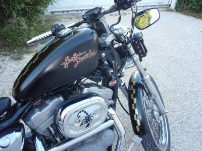 Modification SPORTSTER Light-23