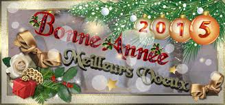 MEILLEURS VOEUX POUR 2015 V20110