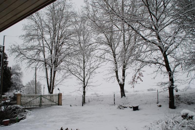 la neige est-elle arrivée chez vous ?  - Page 14 Dsc_1610