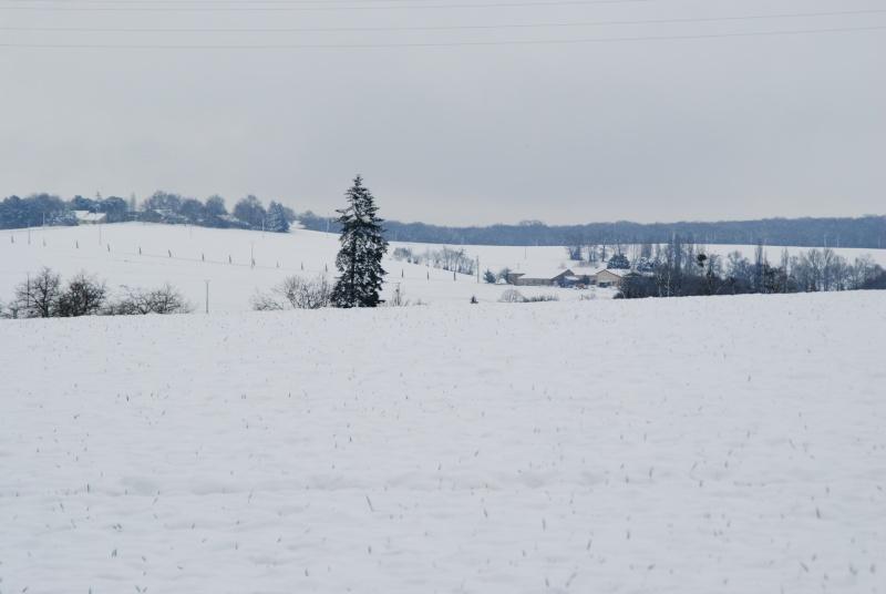 la neige est-elle arrivée chez vous ?  - Page 14 Dsc_1611