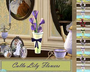 Цветы для дома - Страница 8 Image214