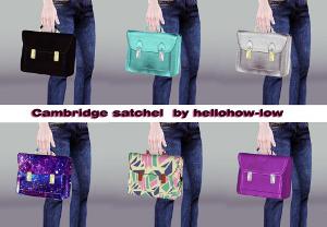 Сумочки, чемоданы, рюкзаки - Страница 4 Image260