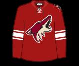 Phoenix Coyotes 11210