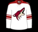 Phoenix Coyotes 11310