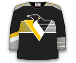 Pittsburgh Penguins 44110