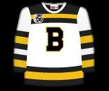 Boston Bruins 66410