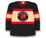Chicago Blackhawks 67610