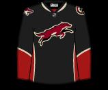 Phoenix Coyotes 75210