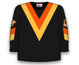 Vancouver Canucks 86710