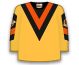 Vancouver Canucks 87210