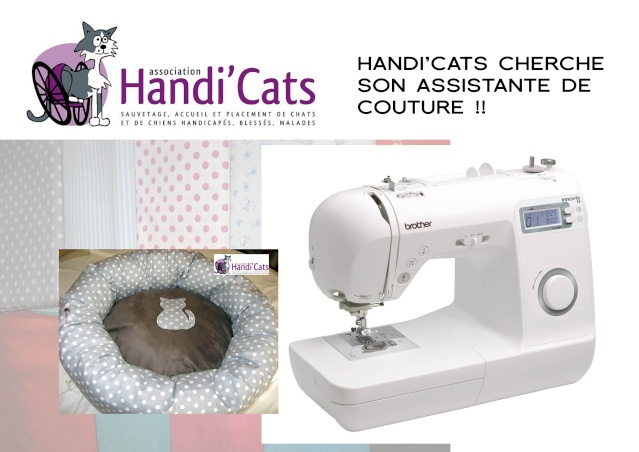 Handi'Cats Boutique à la recherche d'un(e) assistant(e) couture Assist10
