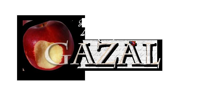 Les contes de Gazal Entete13