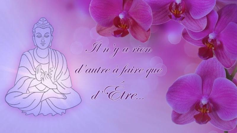 méditation JE SUIS l'UN avec Jean HUDON - Page 2 38_il_10