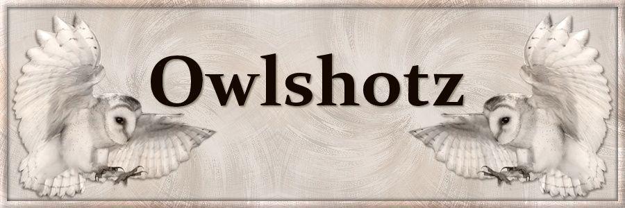 OWLSHOTZ