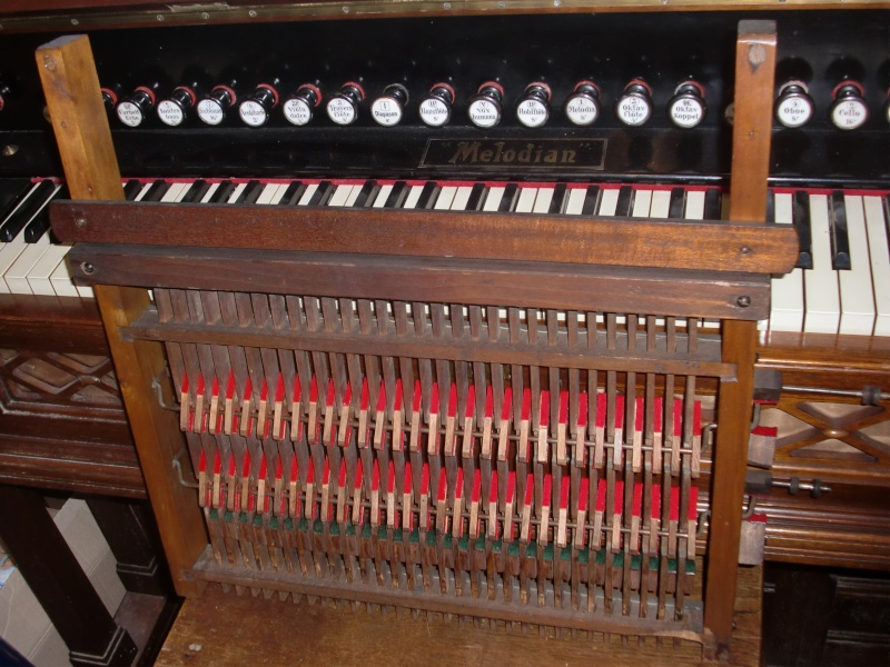 Apollo reed organ - Page 2 Cimg4112