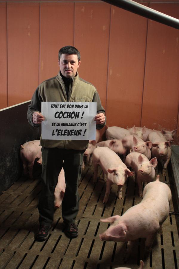 le prix du porc en chute libre - Page 2 B-eqed10