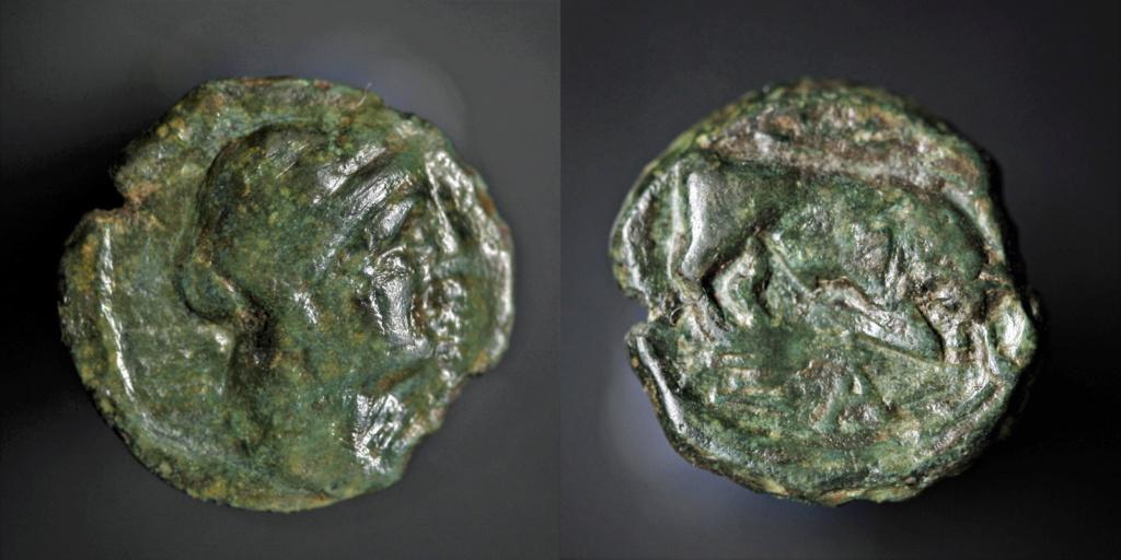 Petit bronze au taureau  Marsei10