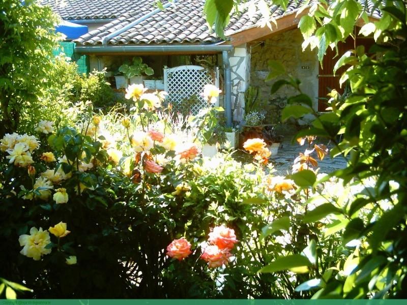 mon arche de rosier en 2014 Marose10