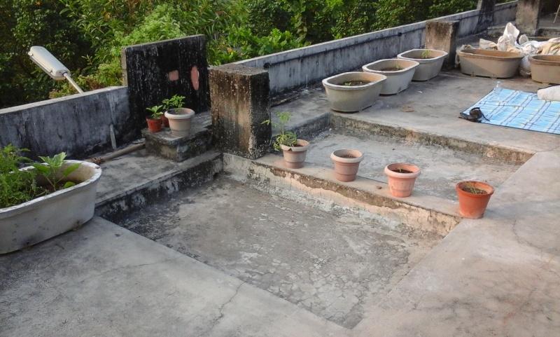 Le recyclage à l'ashram d'Amma 1410