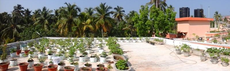 Le recyclage à l'ashram d'Amma 1510