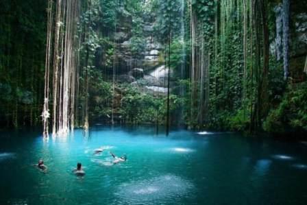 LES CENOTES, PORTES VERS L'AUTRE MONDE... Cenote13