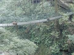 La Chine sac au dos (7) : Une des Montagnes Bouddhistes. Le  Mont Emeishan: ascension en janvier 2008 Les_si11