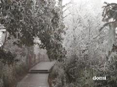 La Chine sac au dos (7) : Une des Montagnes Bouddhistes. Le  Mont Emeishan: ascension en janvier 2008 Montae11
