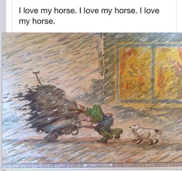 A cheval, ferré ou paré, tout sur les pieds - Portail I_love10