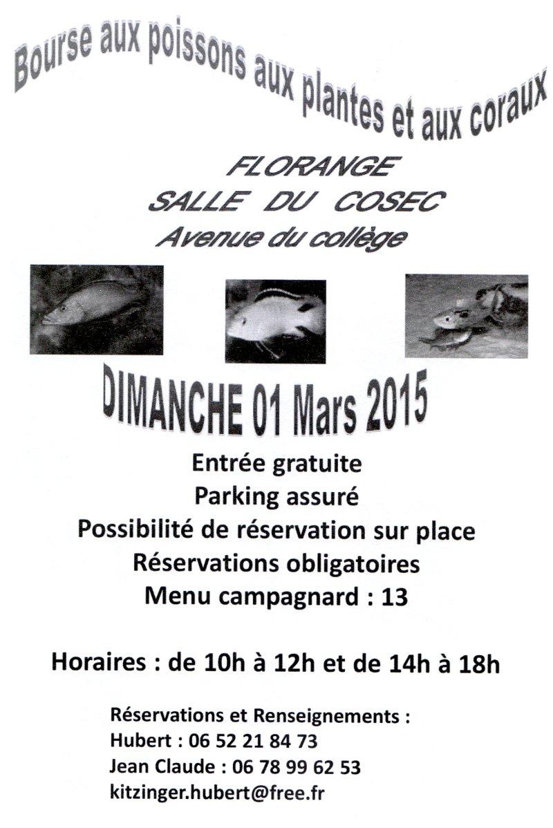Bourse à Florange - 1er mars 2015   Floran10