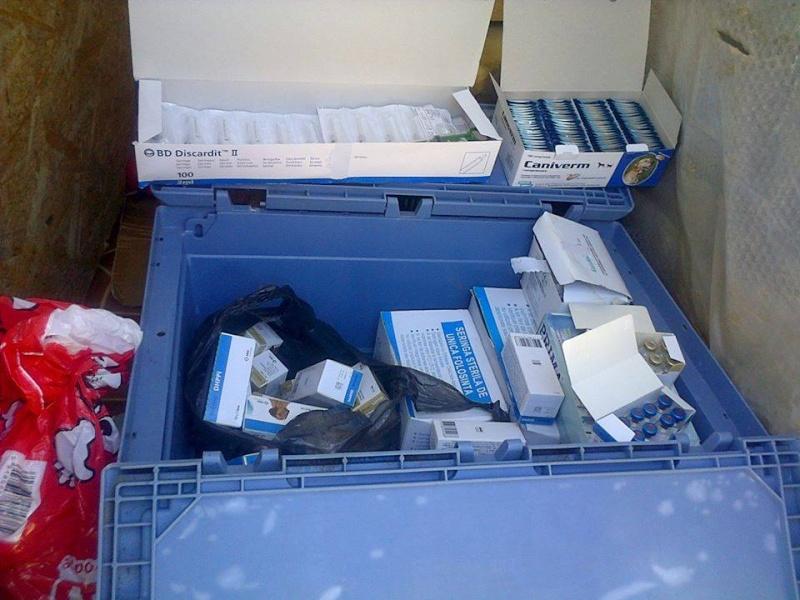 Appel aux dons : 1200€ nécessaires pour a campagne de vaccination des chiens en fourrière 10931210