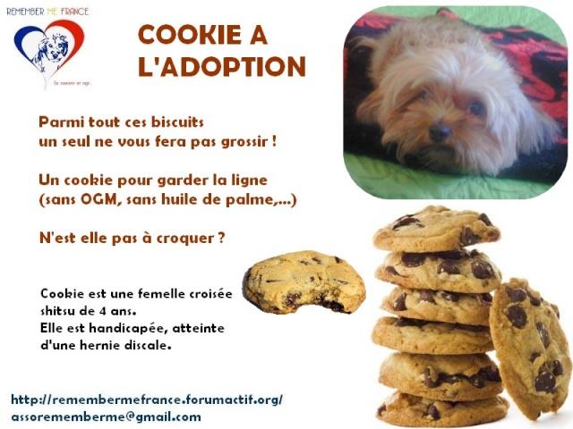 Un petit concours Cookie10