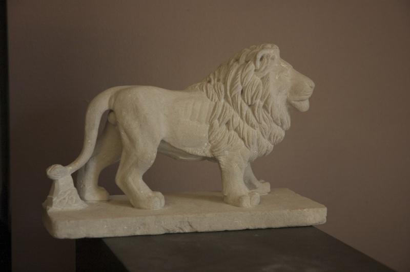 Lion - Page 2 Dsc_6610