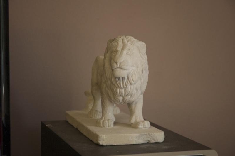 Lion - Page 2 Dsc_6611