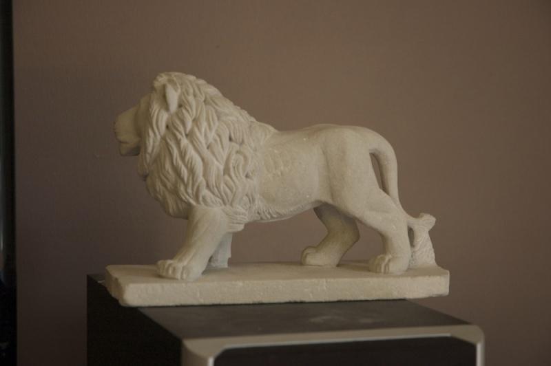 Lion - Page 2 Dsc_6612